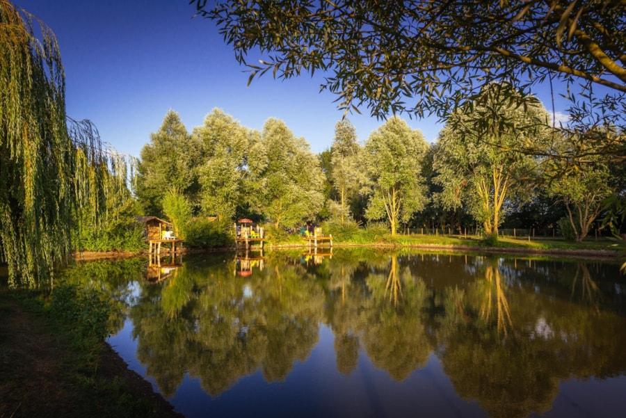 Camping Sites Et Paysages Domaine De L'étang - Brissac-Quincé