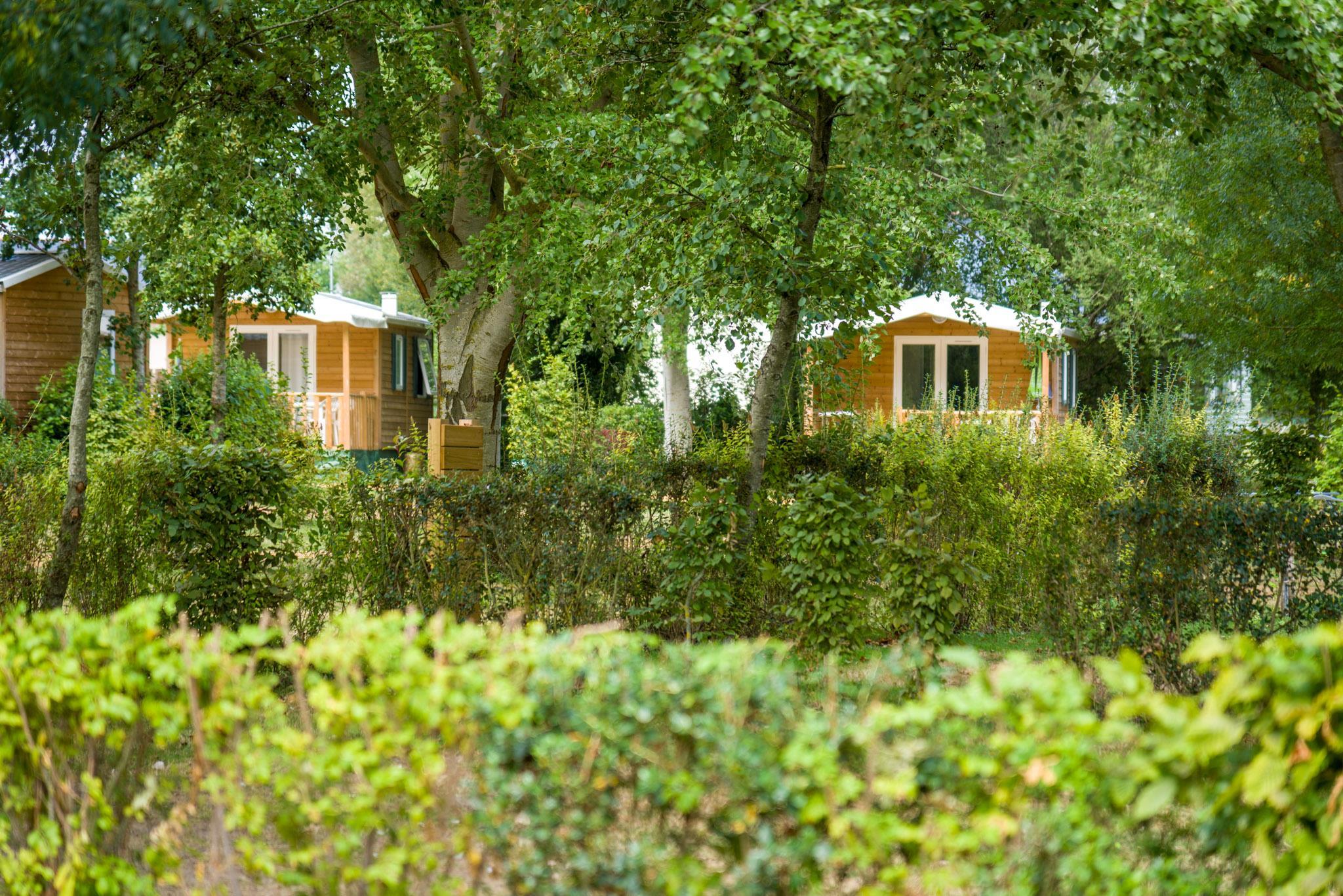 Camping Domaine de l'Etang, Brissac-Quince, Maine-et-Loire