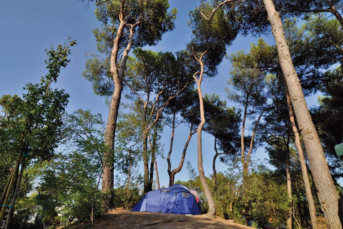 Emplacement - Emplacement Small : Voiture (Dans Le Parking) +Petite Tente  (Max 50 Mq)+ Électricité 6A - Villaggio Turistico Europa
