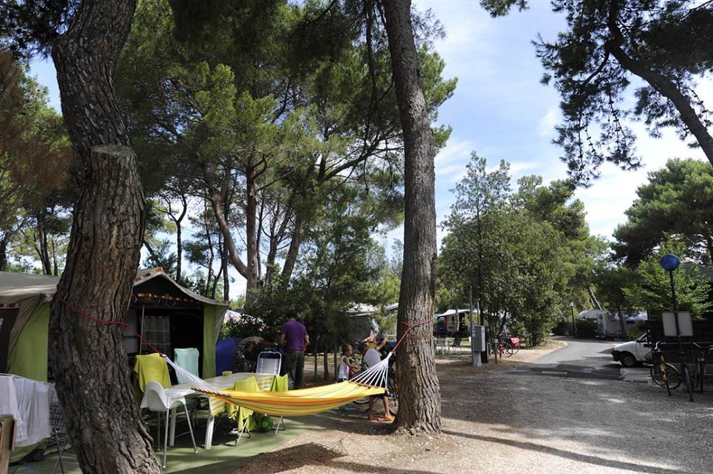 Emplacement - Emplacement Medium : Voiture (Dans Le Parking) + Tente/Caravane Ou Petit Camping-Car + Électricité 6A- Du 50 Au 65 Sm - Villaggio Turistico Europa