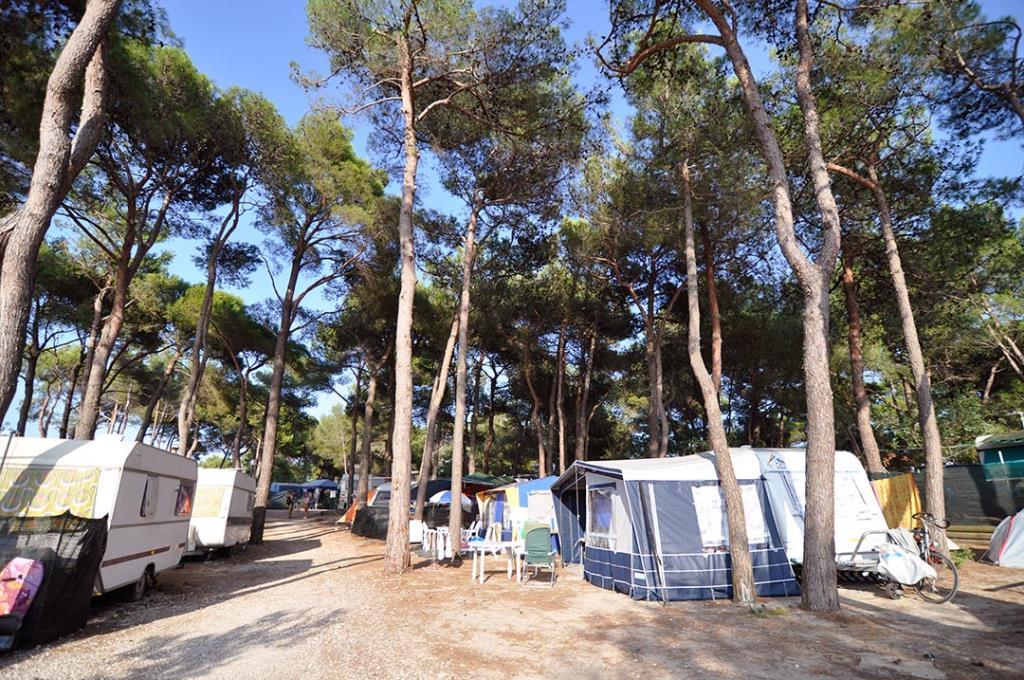 Emplacement - Emplacement Extra Large :( Du 86 Mq) Voiture (Dans Le Parking) + Tente/Caravane Ou Camping-Car + Électricité 6A - Villaggio Turistico Europa