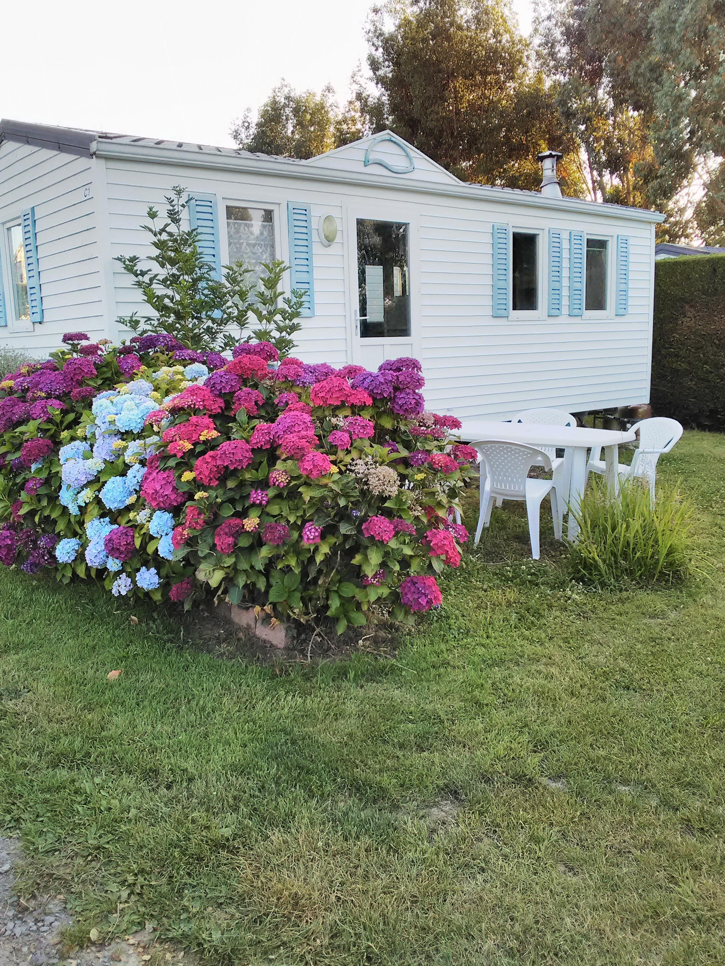 Location - Mobil-Home  Sans Terrasse, Sans Tv. Salon De Jardin, Barbecue - Camping Le Panoramic