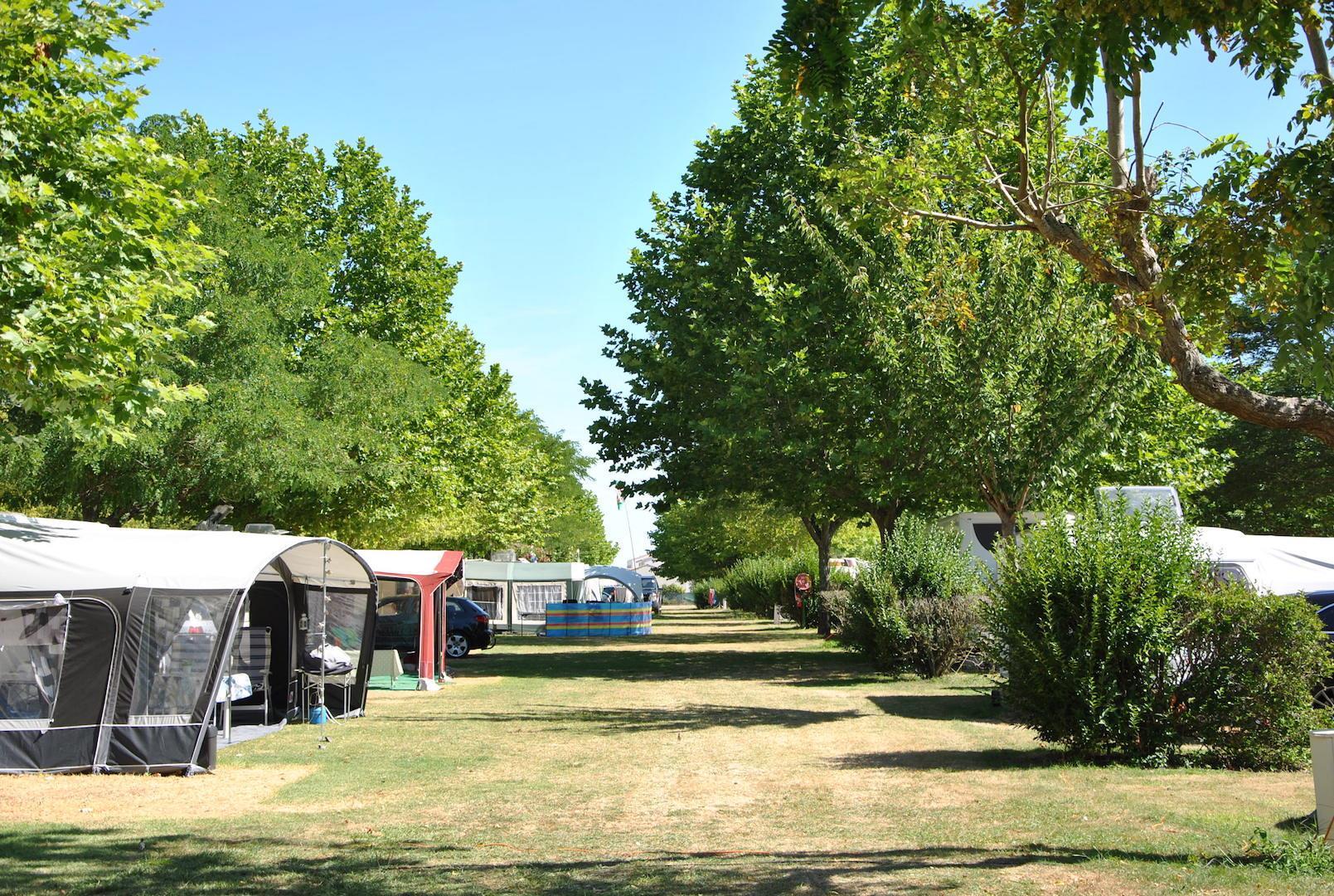 Camping le Logis du Breuil, Saint-Augustin, Charente-Maritime