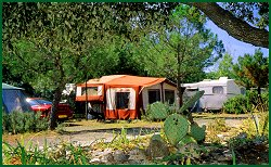 Nature Package : 1 Tent Or Caravan + 1 Car (Without Electricity)