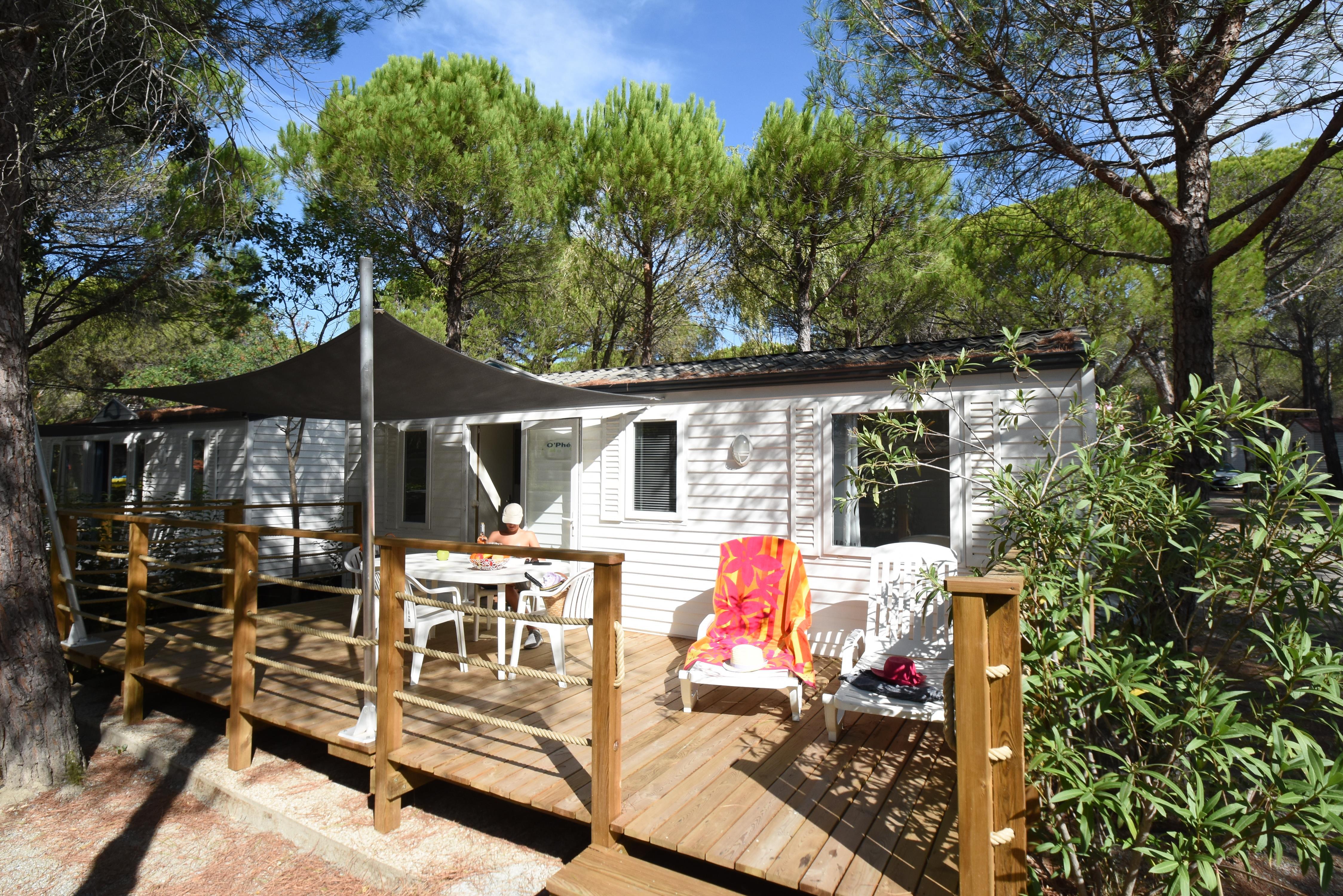 Location - Mobil-Home  Phoenix 32M² - 3 Chambres - Camping La Baume La Palmeraie