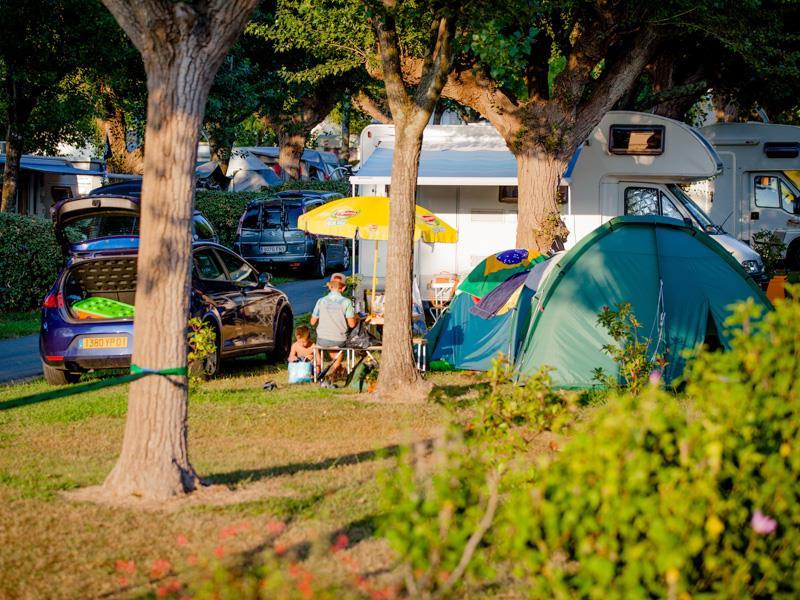 Emplacement camping + électricité