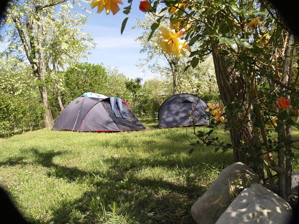 Pitch - Pitch Jardin**** - CAMPING LA DIGUE