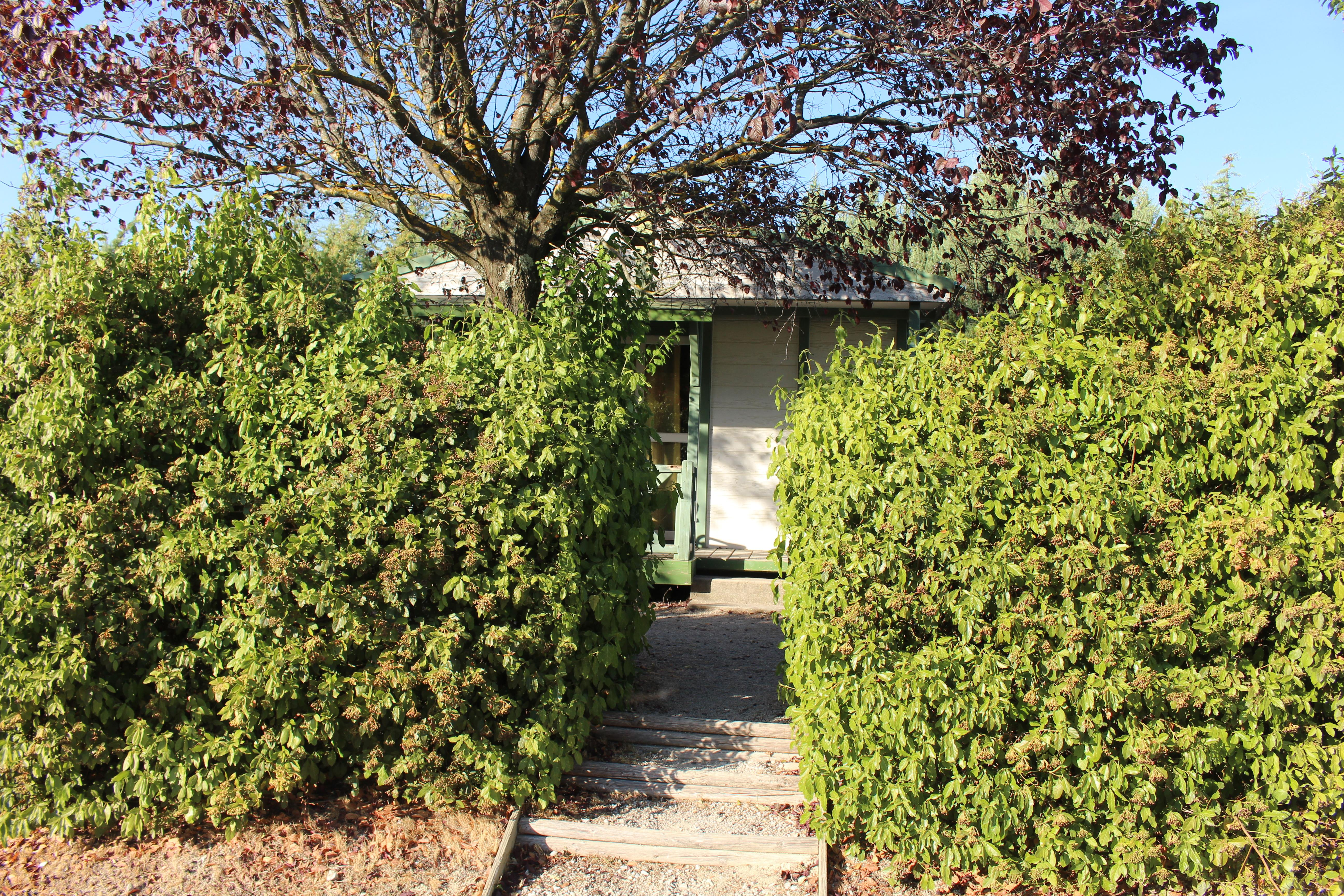 Location - Chalet - Camping Forcalquier