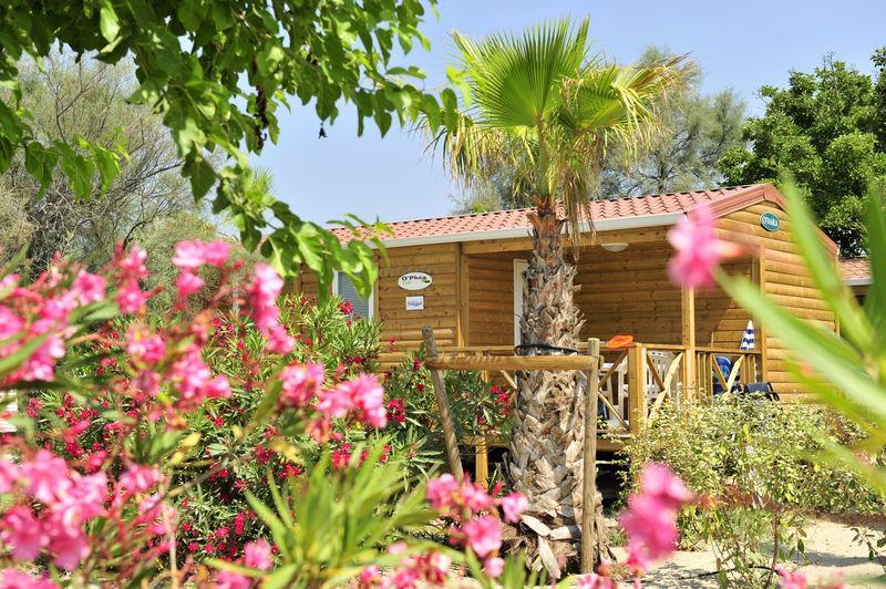 Capfun Camping Boucanet, Le Grau-du-Roi, Gard