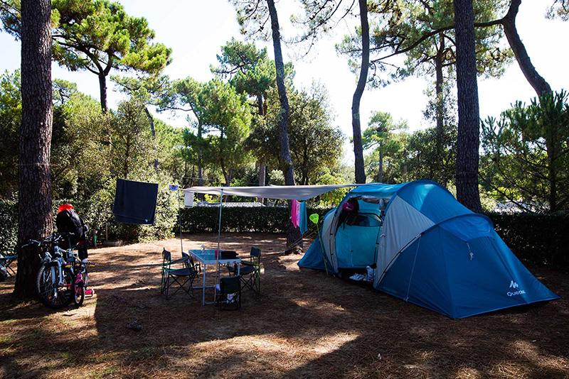 Emplacement - Emplacement Tente Mer / Pins - Camping Bois Soleil