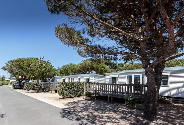 Location - Cottage Mer 3 Ch 2 Sdb (Prestige) - Camping Bois Soleil