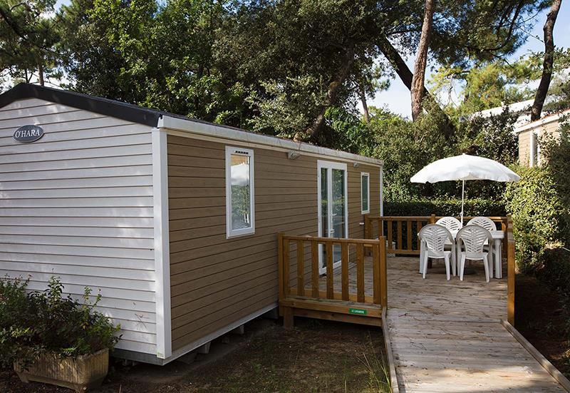 Location - Cottage Pins 2 Ch Pmr (Premium) - Camping Bois Soleil