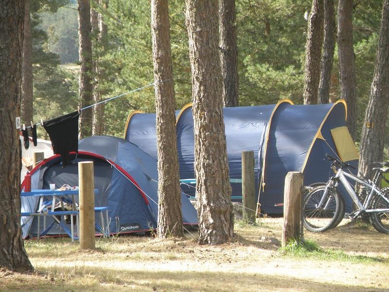 Emplacement - Emplacement Standard, 1 Installation, 1 Voiture, 2 Adultes - Camping Les Sous Bois du Lac