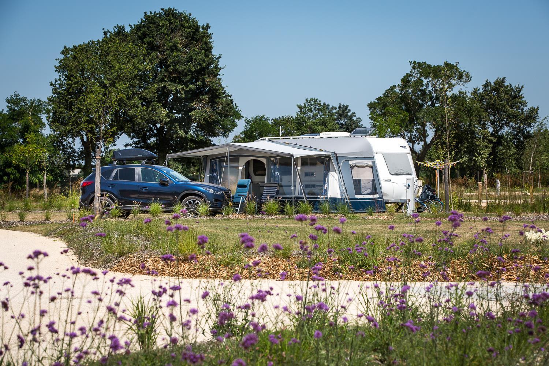 Camping Yelloh Village le Pin Parasol, La Chapelle-Hermier, Vendée