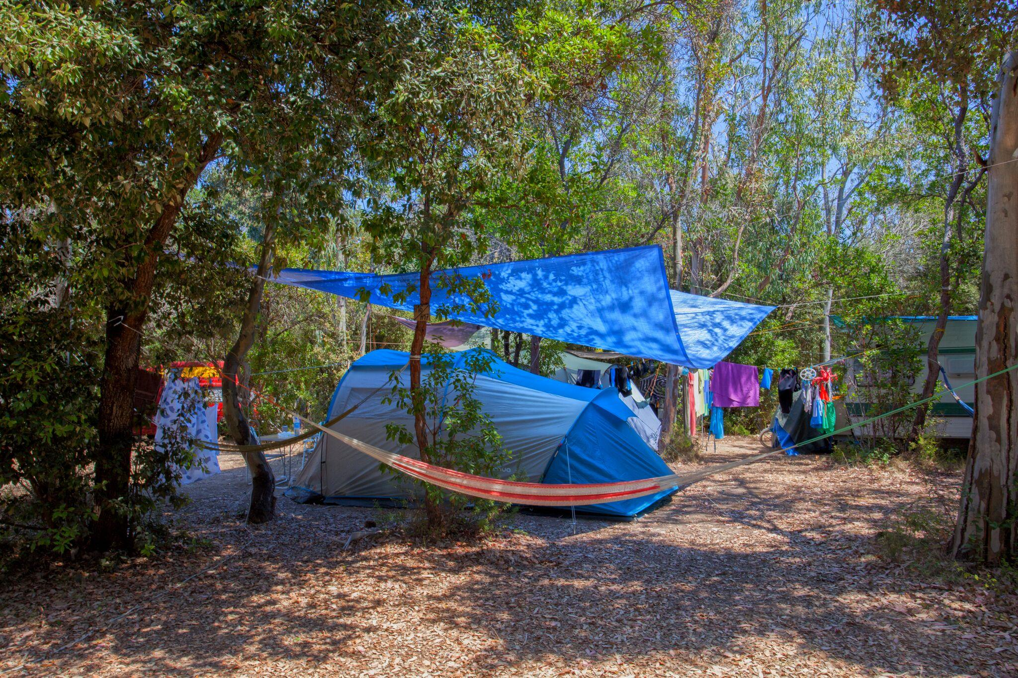 Camping Bagheera, Bravone, Corse