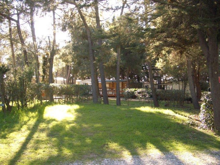 Emplacement - Emplacement : Forfait 2 Personnes + 1 Véhicule - Camping Le Sainte Marie