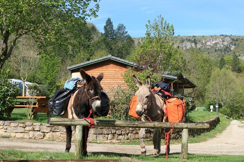 Camping La Cascade