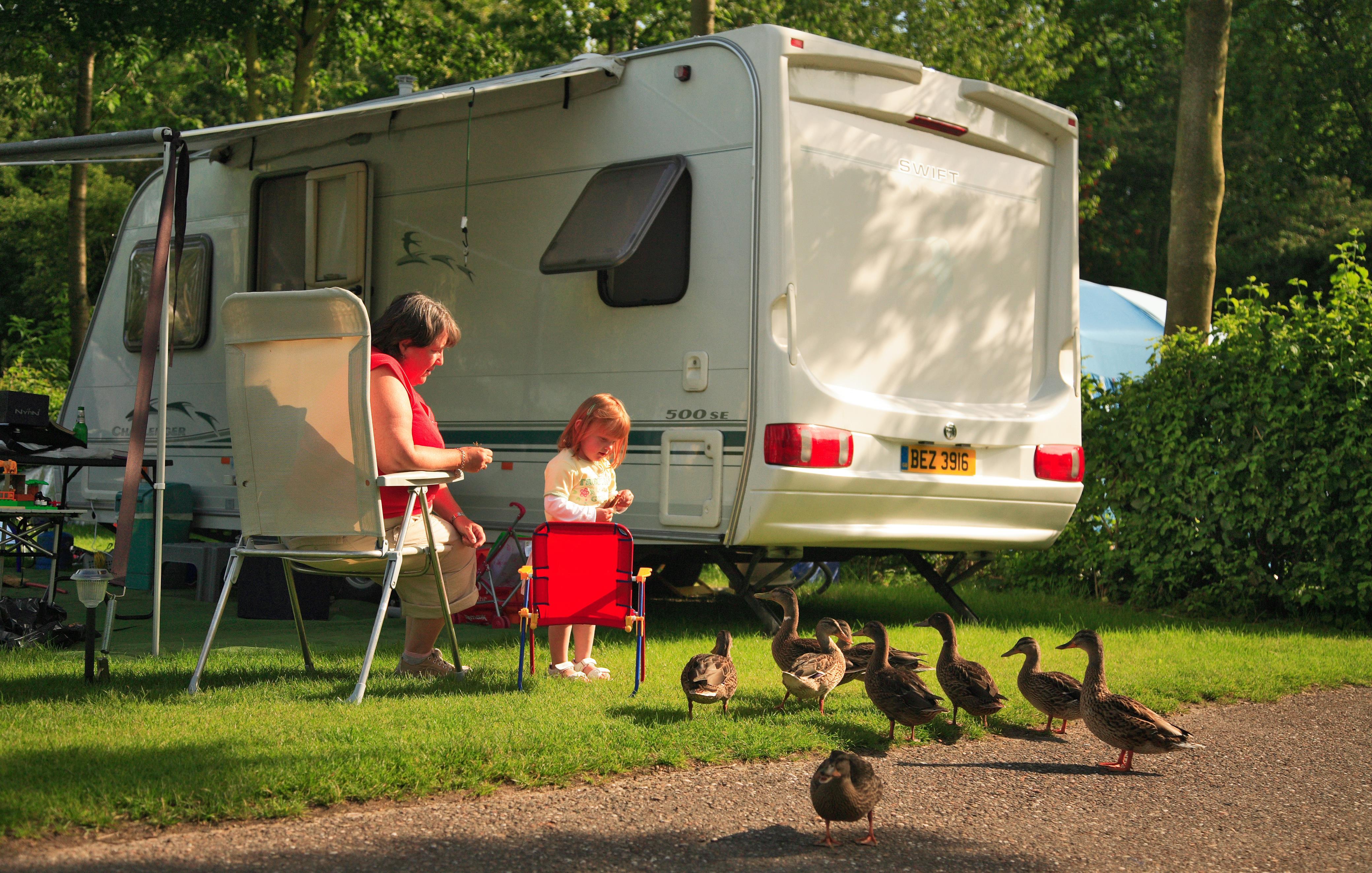 Emplacement - Emplacement De Camping - 80M² Incl. Électricité 10A - Vakantiepark Koningshof