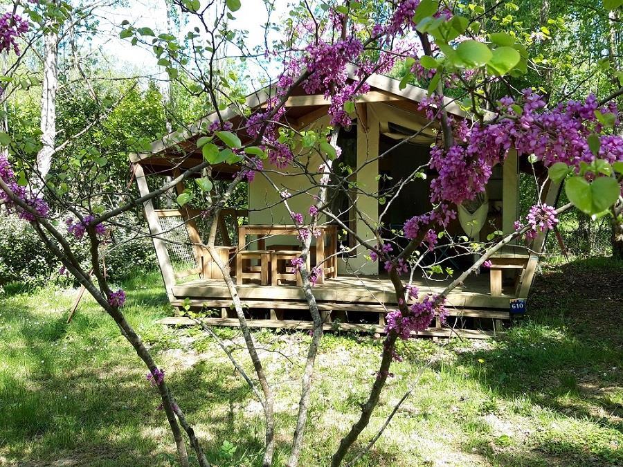 Location - Freeflower Premium (2 Chambres) Avec Sanitaire - Flower Camping Les Gorges de l'Aveyron