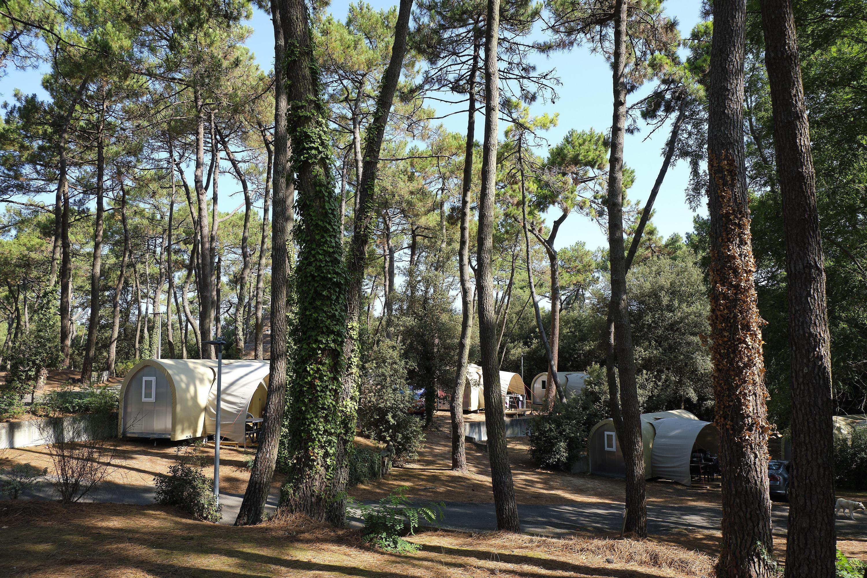 Camping le Bois d'Amour, La Baule-Escoublac, Loire-Atlantique