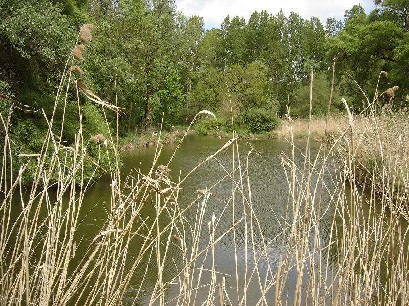 Camping le Cattiaux, Courdimanche-sur-Essonne, Essonne