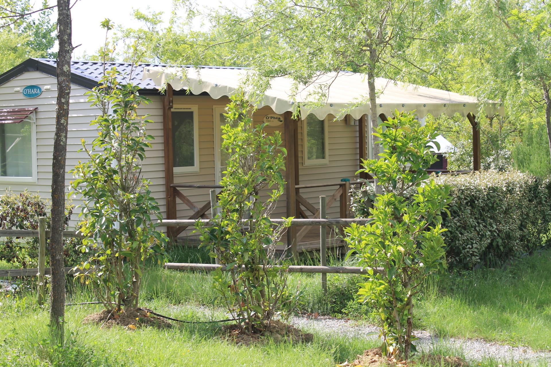 Accommodation - Mobile-Home Confort+ 32 M² 3 Bedrooms - Flower CAMPING SAINT AMAND