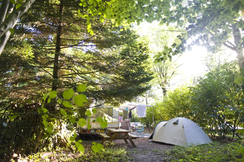 Emplacement - Emplacement Camping Confort - Huttopia Rambouillet