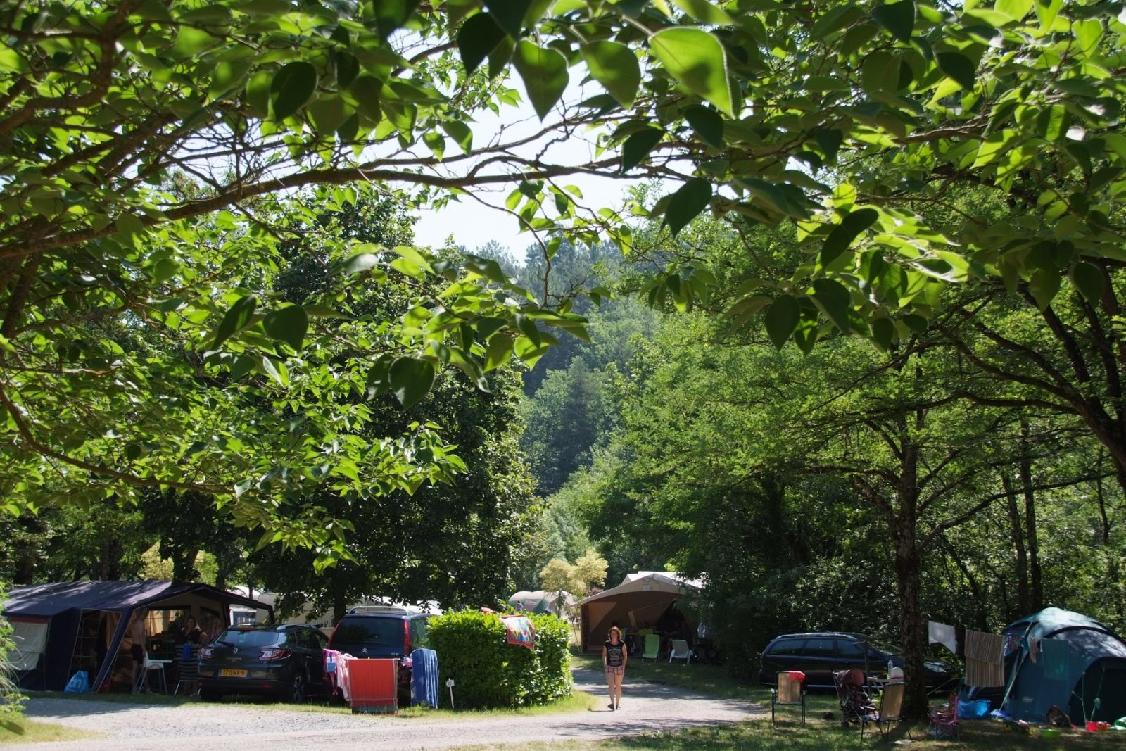 Pitch - Great Location: 150 M² (Car + Tent / Caravan / Camping-Car + Electricity 10A) - Camping Coeur d'Ardèche