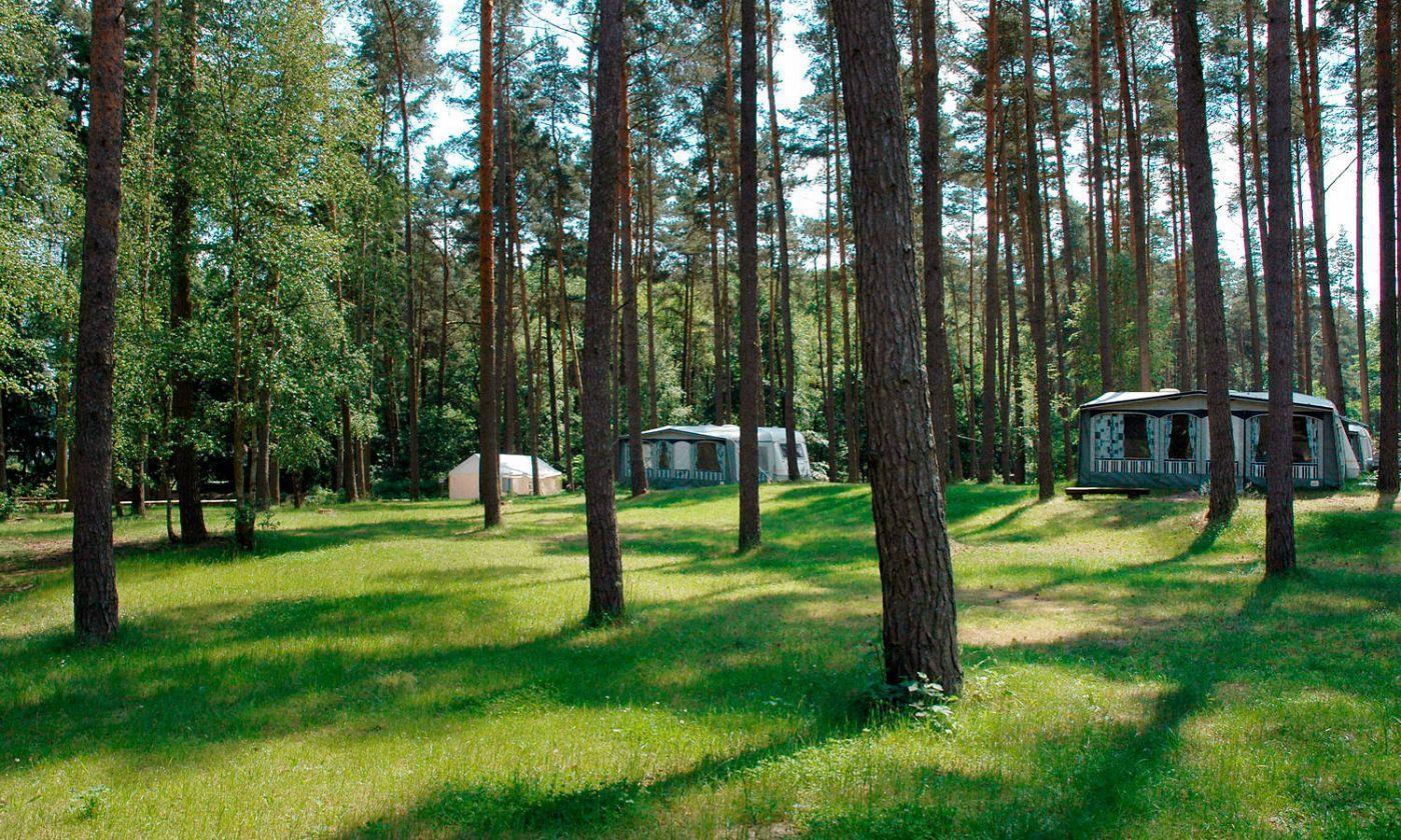 Emplacement - Empl.  Caravane Ou Tente - 2 Adultes/3 Enfants Ou 3 Adultes - Electricité Inclue - Camping Useriner See