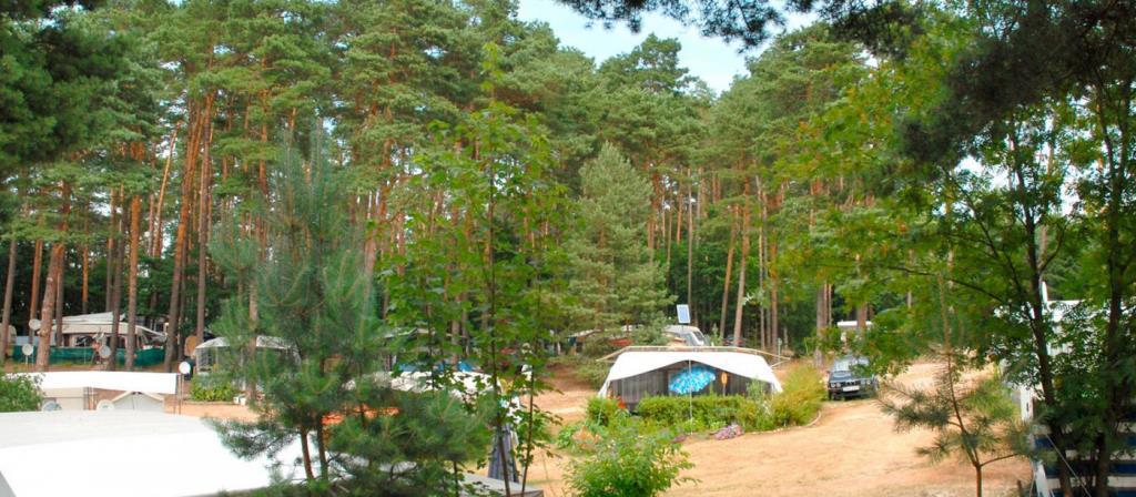 Emplacement - Empl.  Caravane Ou Tente - 2 Adultes/3 Enfants Ou 3 Adultes - Electricité Inclue - Naturcamping am Großen Pälitzsee