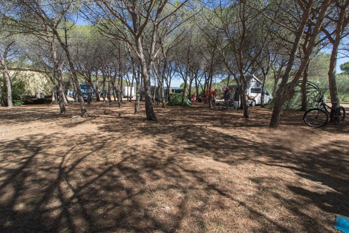 Emplacement - Emplacement Tente Familiale / Mini Bus - Camping Pedra e Cupa