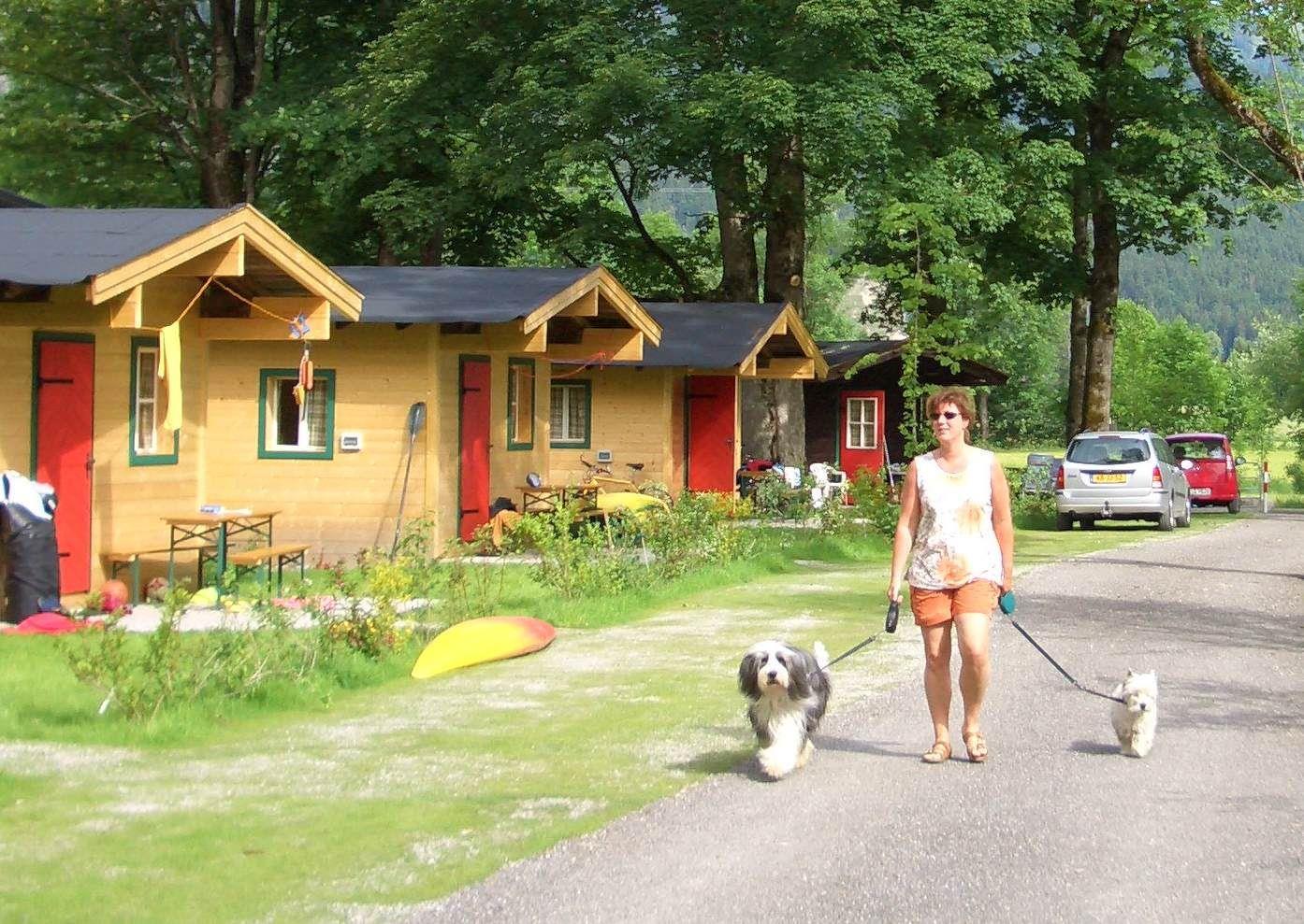 Cabane- incl. 2 adultes, 1 voiture et éléctricité