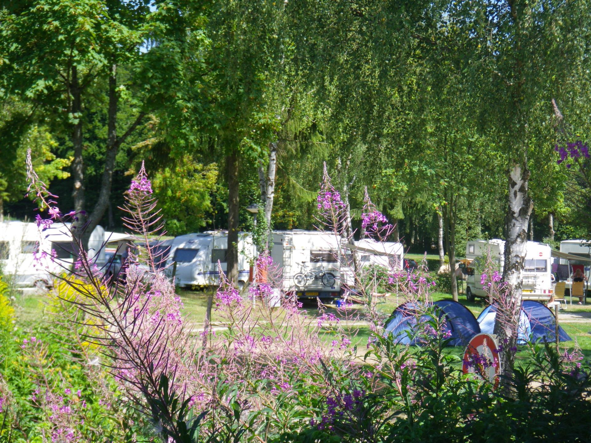 Emplacement - Emplacement (Caravane/Tente/Auto) - Camping auf Kengert