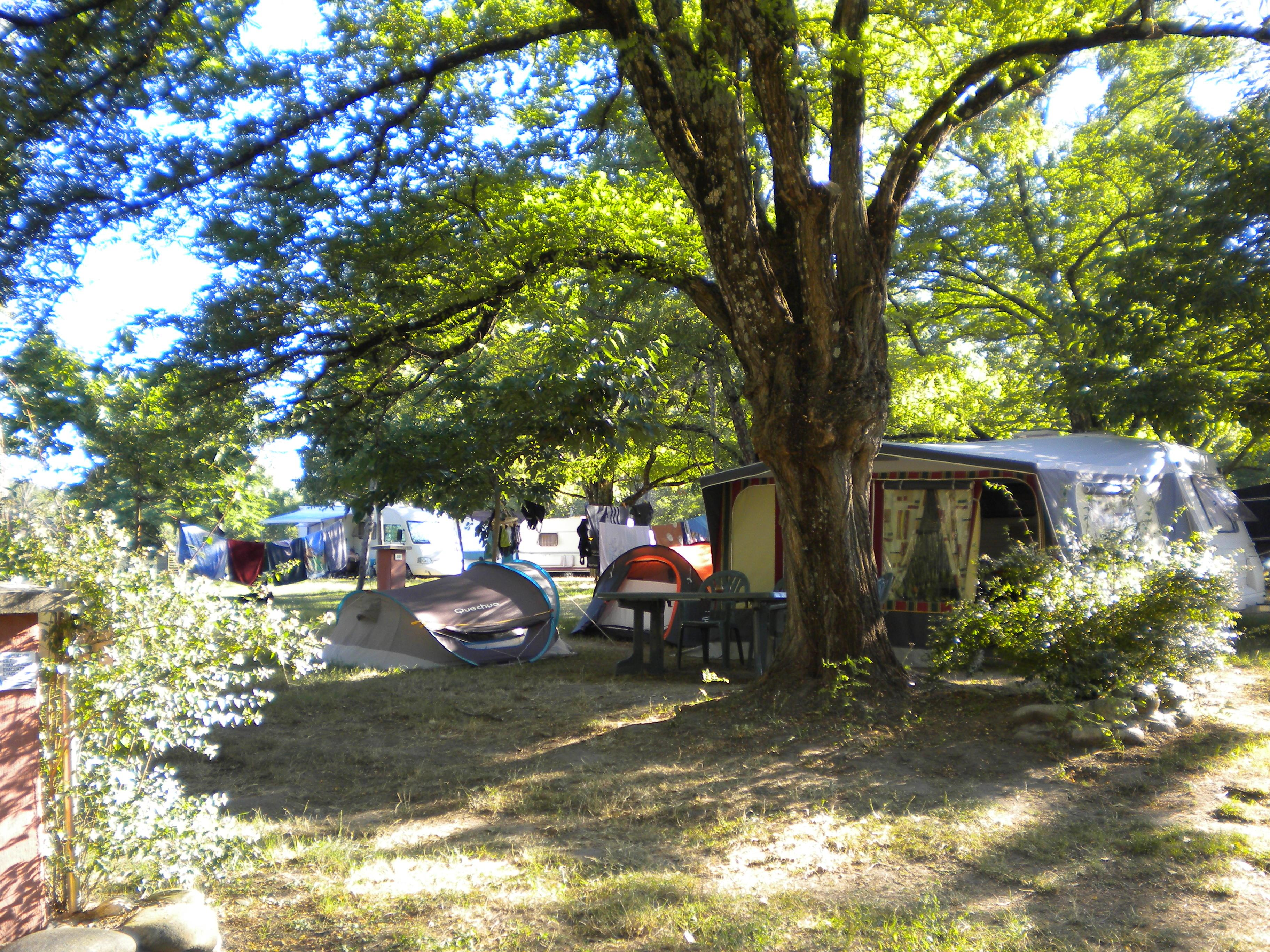 Pitch - Pitches  From 80 To 100 M² - Camping les Peupliers
