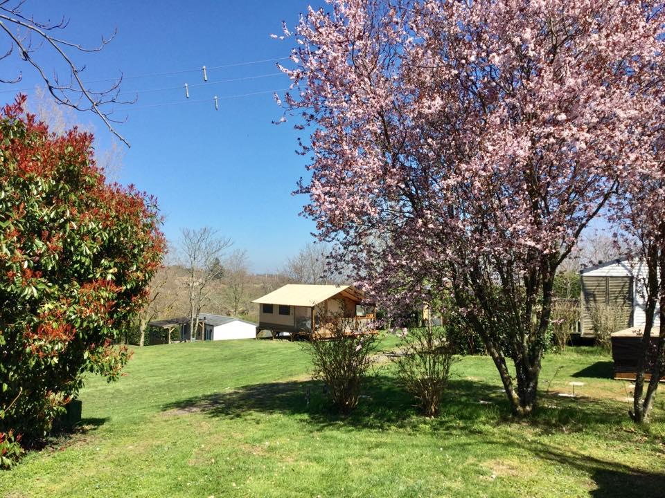 Accommodation - Canvas Bungalow - Camping du Bas Larin