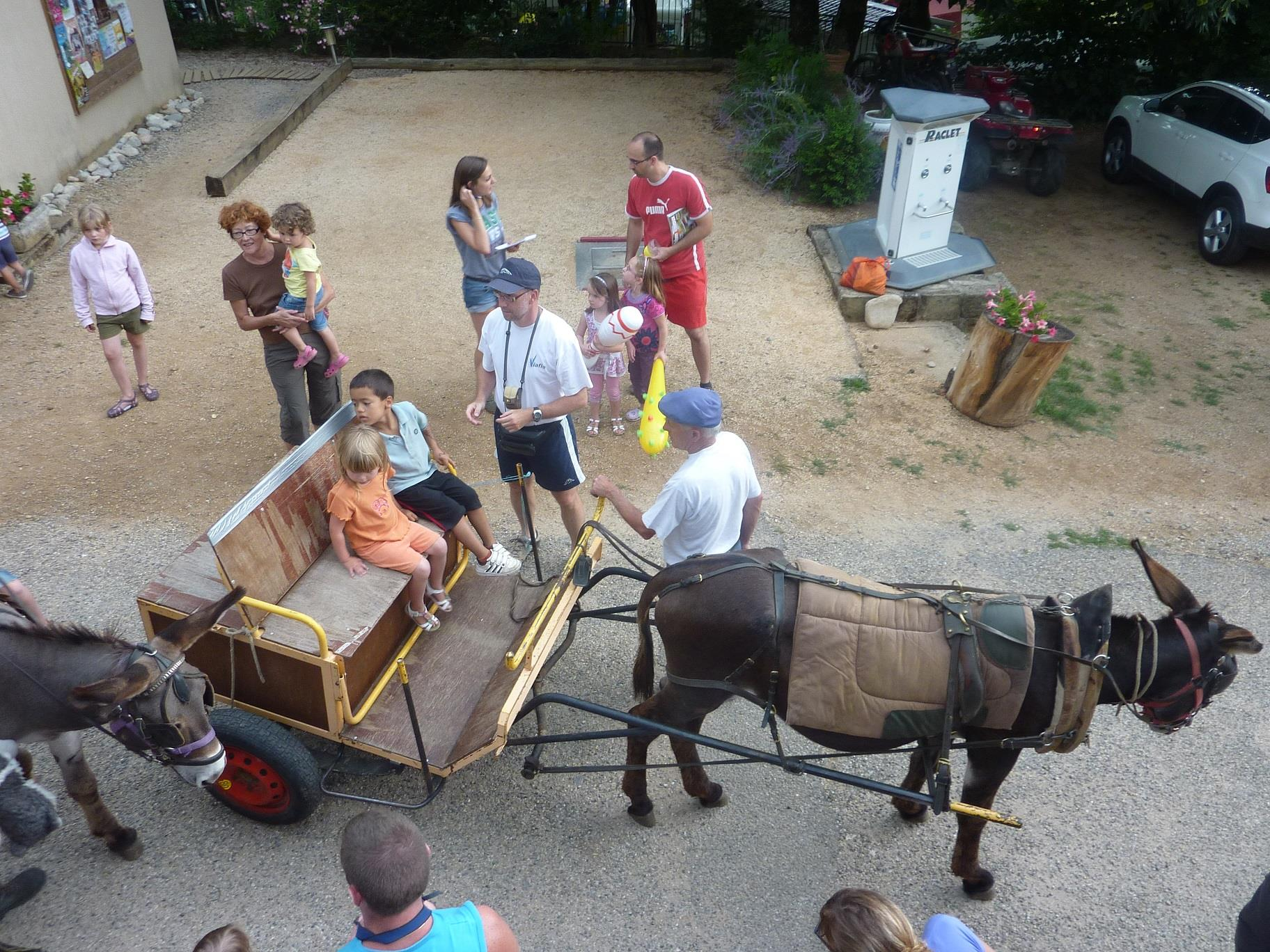 Entertainment organised Camping Les Cruses - Ribes