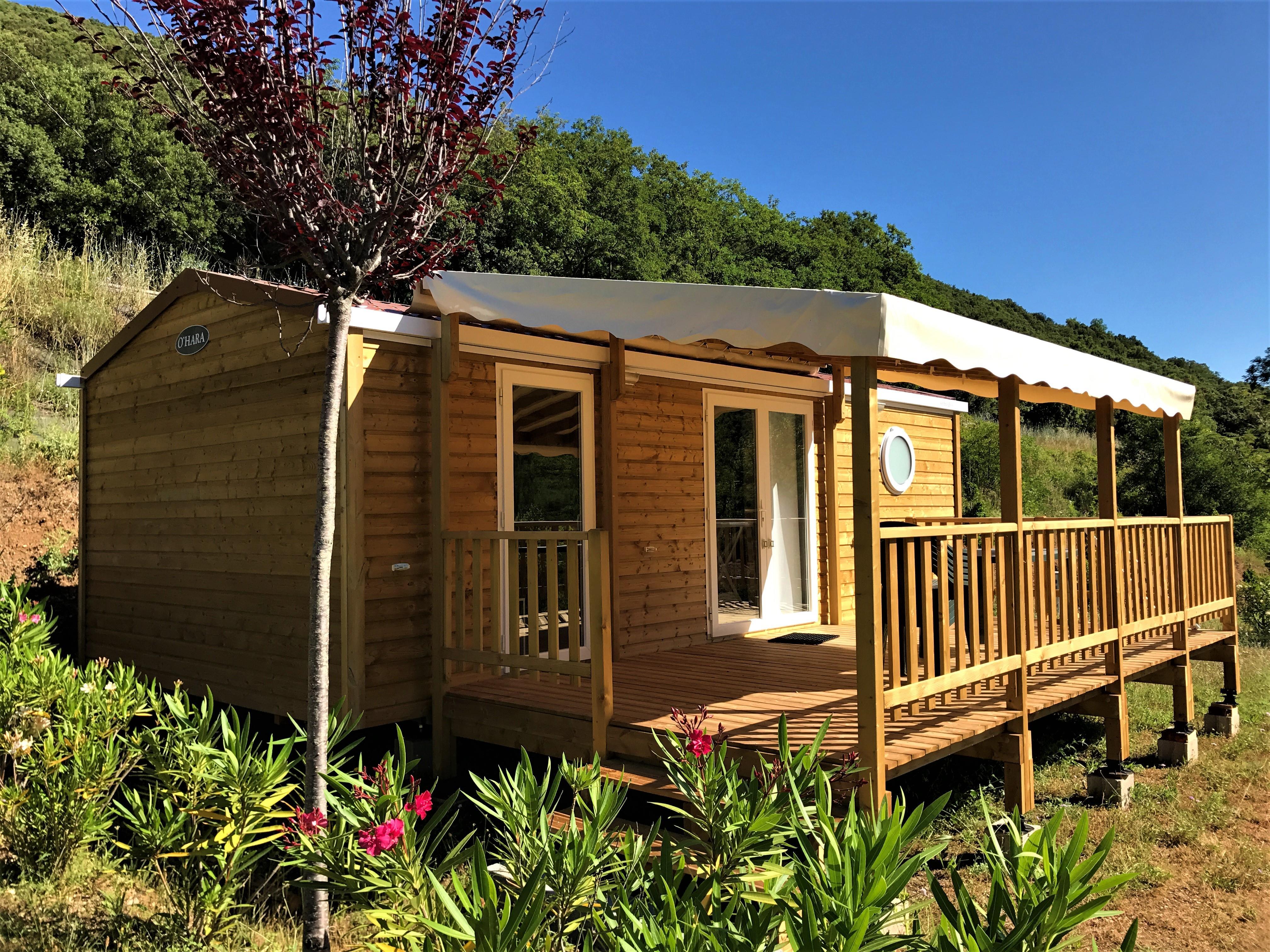 Location - Cottage Merise - 28 M² - 2 Chambres - - Camping Les Cerisiers du Jaur