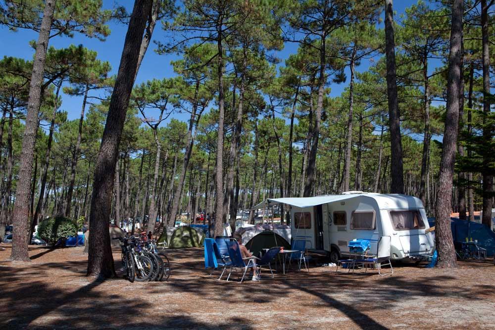 Emplacement - Emplacement Standard - Camping Le Vieux Port