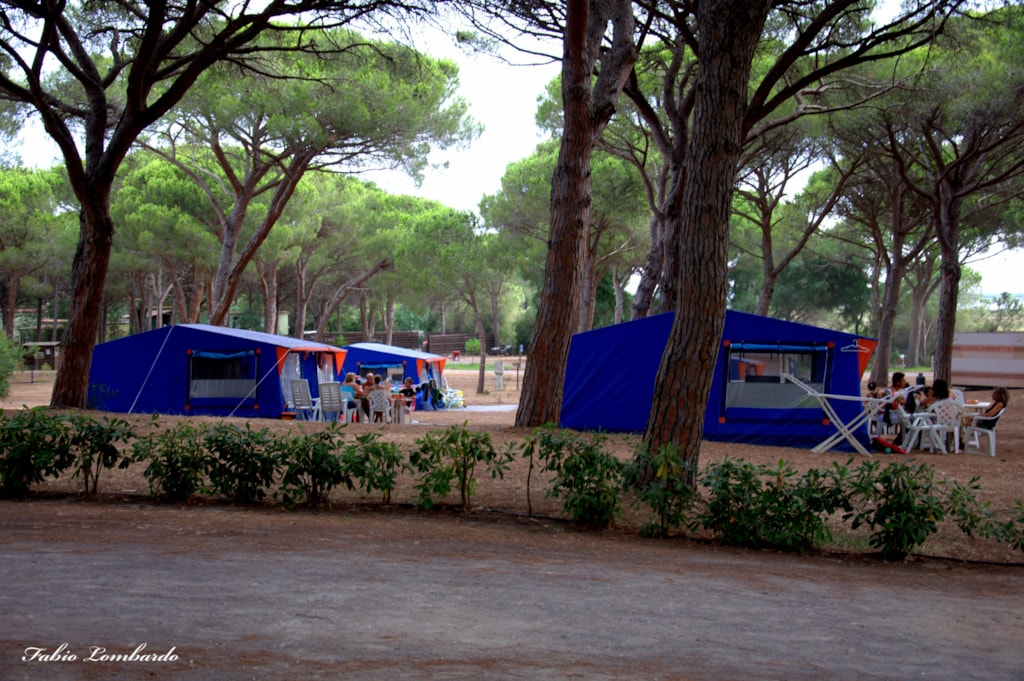 Tenda Mirto - Chalet Tent (25 M²)