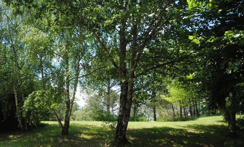 Camping Brin d'Amour, Saint-Cirq, Dordogne
