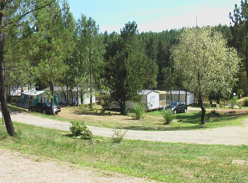 Emplacement - Emplacement Xxl Tribu 250 M² Avec Électicité 16 A Inclus - Petite Vue Étang - Camping Sites et Paysages Etang de Bazange