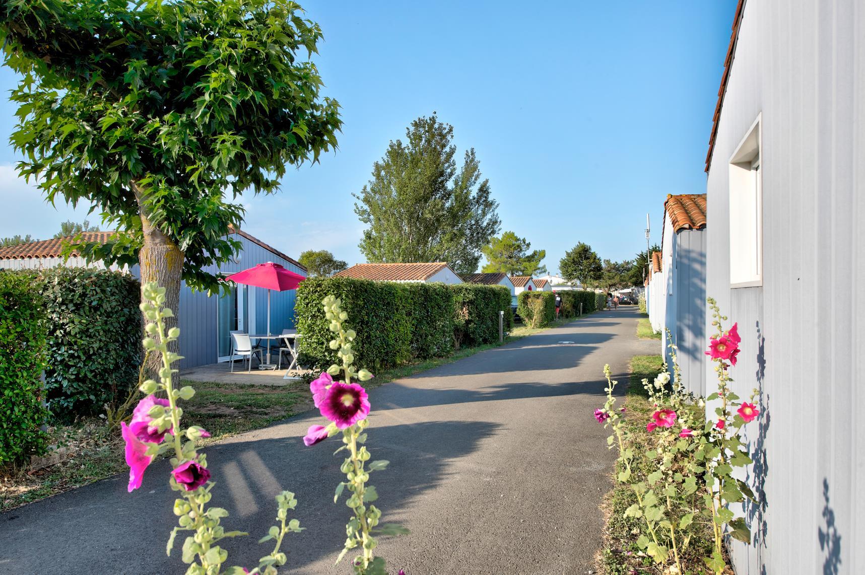 Flower Camping les Ilates, Loix, Charente-Maritime