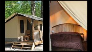 Accommodation - Lodge - Camping Municipal La Grange du Pin