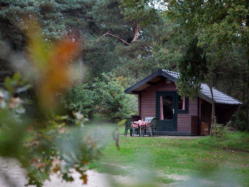 Location - Kampeerhut - Vakantiepark Beerze Bulten
