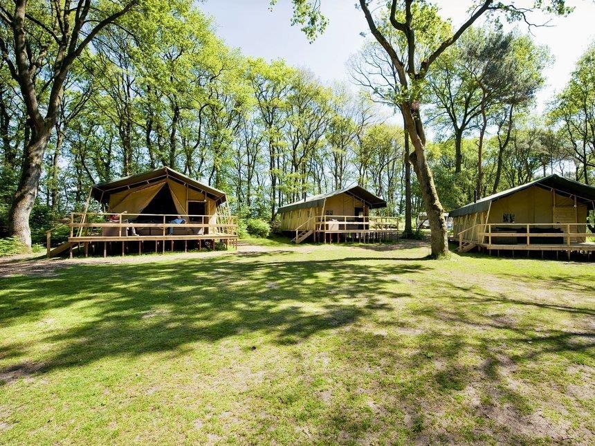 Location - Summer Lodge - Vakantiepark Beerze Bulten