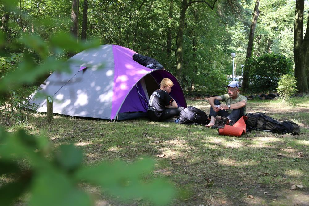 Emplacement - Emplacement Aire Naturelle - Camping Floreal Het Veen