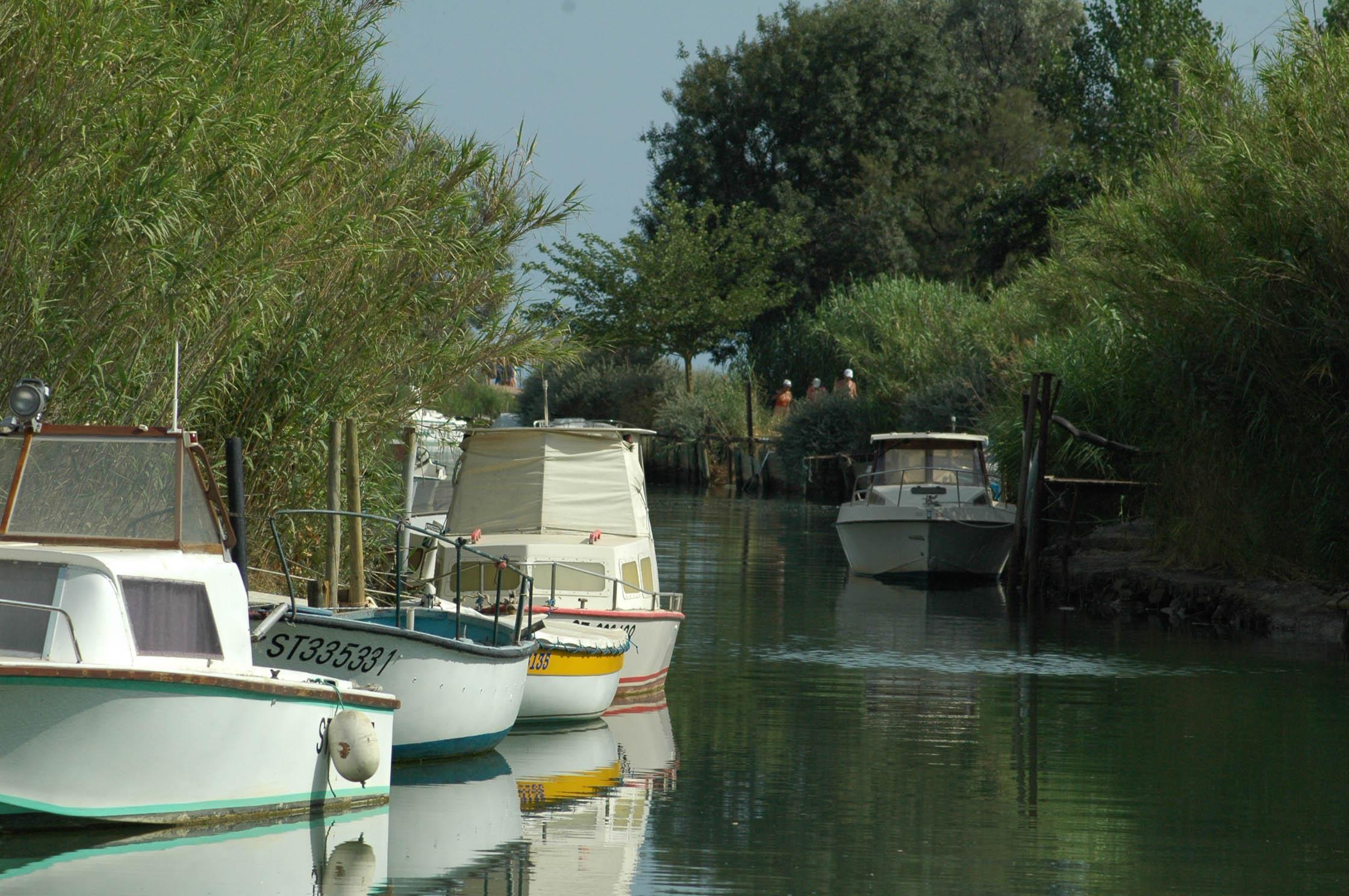 Camping Domaine Sainte Cecile, Vias, Hérault