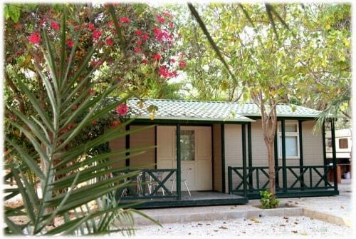 Camping Las Palmeras - Crevillente