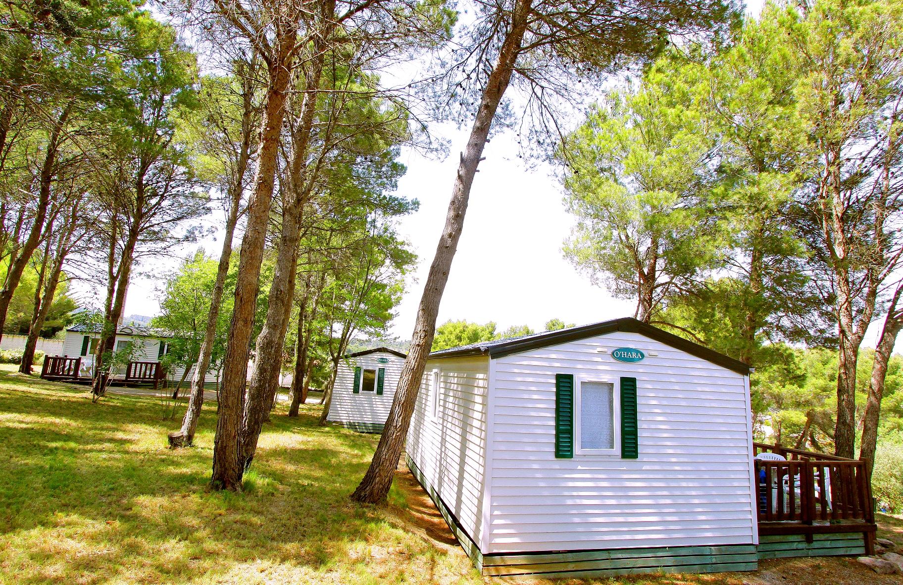 Location - Classic 25 + Tv - Camping Sites et Paysages La Pinède