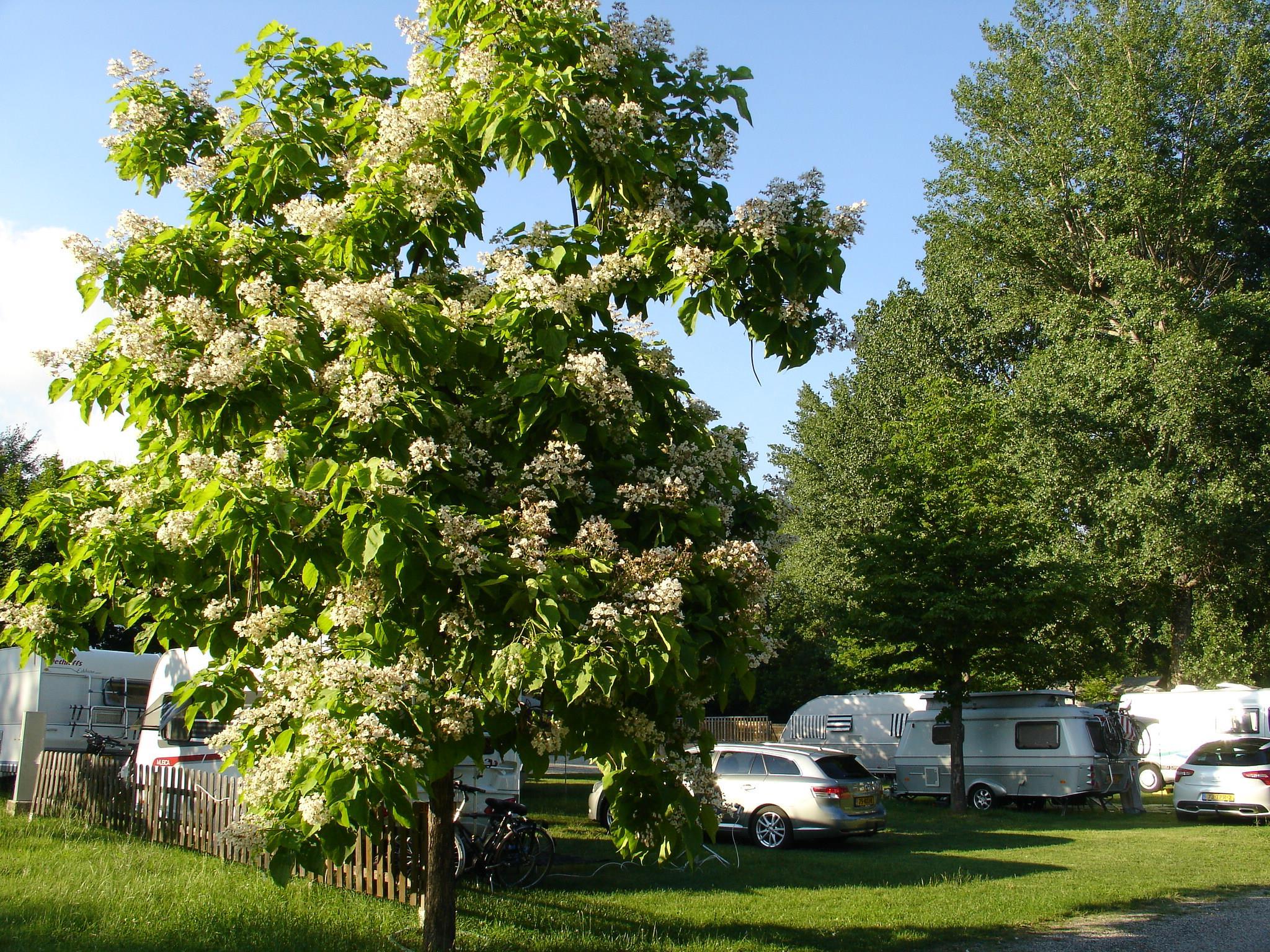 Camping Domaine Provençal, Dieulefit, Drôme